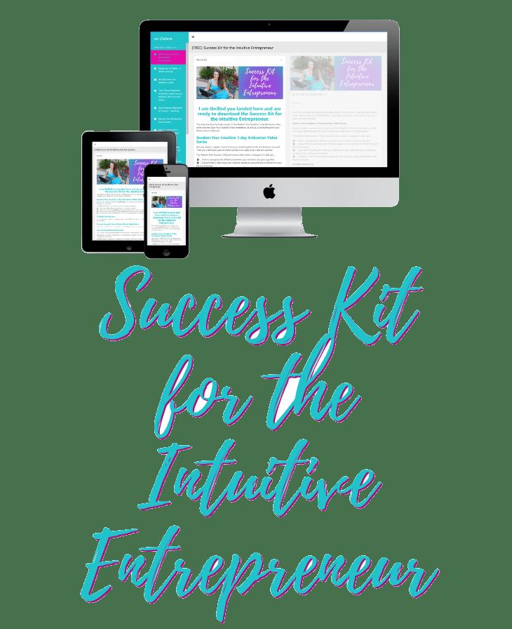 Success Kit for Intuitive Entrepreneur - Transparent